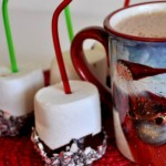 Homemade Hot Cocoa & Chocolate Covered Marshmallow Dunkers
