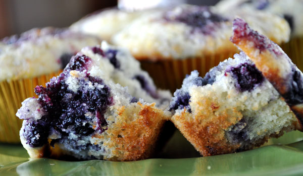 blueberry-muffin-recipe