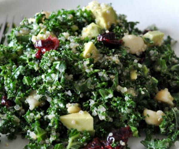 kale-quinoa-salad-cranberries-avocado-macadamia-nuts-mountain-mama-cooks-1