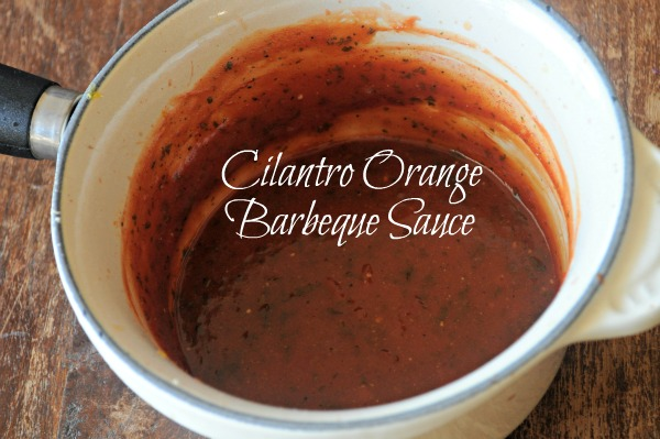 Cilantro-Orange Barbeque Sauce, MountainMamaCooks