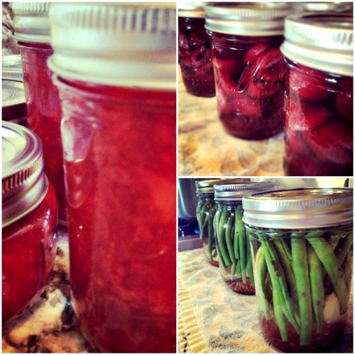 canning collage, www.mountainmamacooks.com
