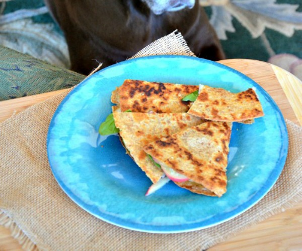 Swiss-Ham-Apple-Quesadilla-with-Honey-Mustard-www.mountainmamacooks.com_