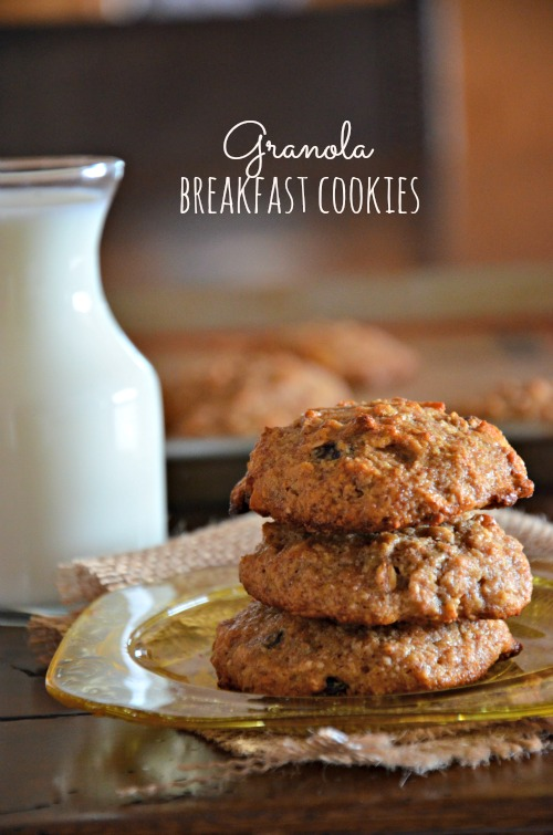 Granola Breakfast Cookies, www.mountainmamacooks.com #glutenfree #vegan #sugarfree #eggfree #dairyfree