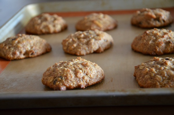 Healthy Breakfast Cookies, www.mountainmamacooks.com