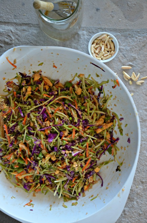 Quinoa Broccoli Slaw Recipe, www.mountainmamacooks.com