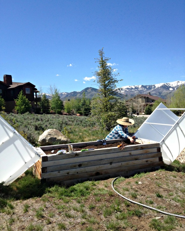 High Altitude Gardening, Www.mountainmamacooks.com