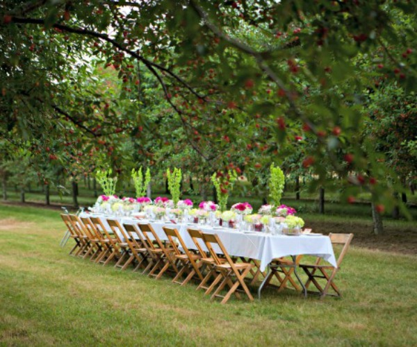 feature Michigan Cherry Orchard Dinner, www.mountainmamacooks.com
