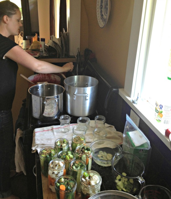 making quick dill pickles, www.mountainmamacooks.com