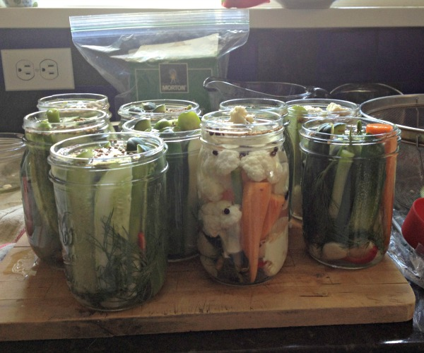 Canning Dill Pickles, www.mountainmamacooks.com