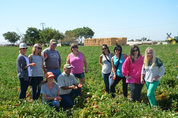 Del Monte-Carerra-Farms-Tomato-Tour