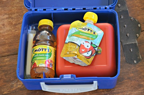 Lunch Box with Motts