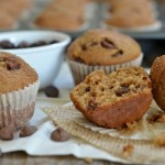 Chocolate Chip Snickerdoodle Muffins {Giveaway}
