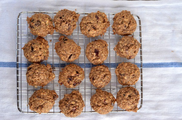 gluten-free-breakfast-cookies-mountain-mama-cooks-feature