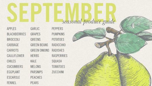 September-Seasonal-Produce-Guide-1024x576