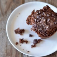 Double Chocolate Muffins | mountainmamacooks.com