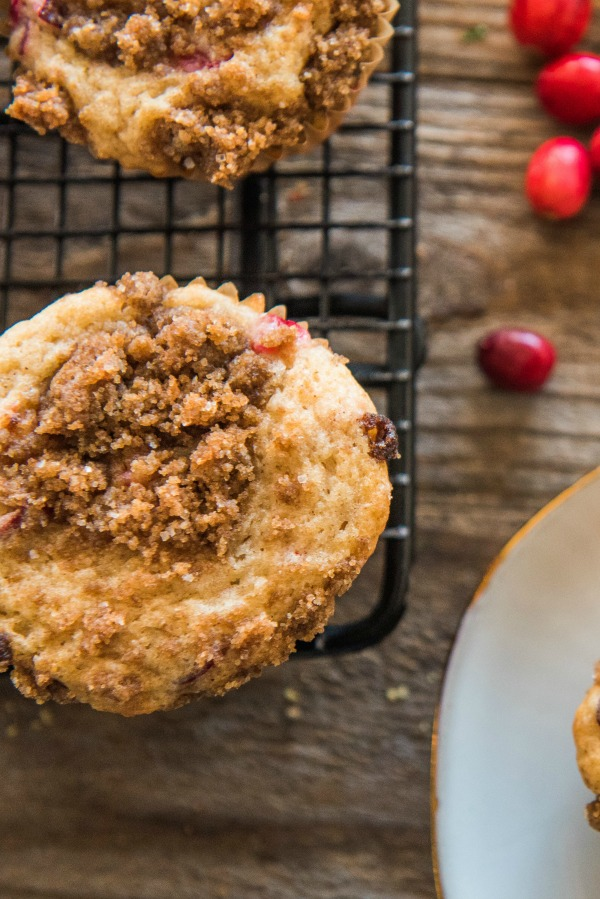 Cranberry Coffee Cake Muffins | www.mountainmamacooks.com
